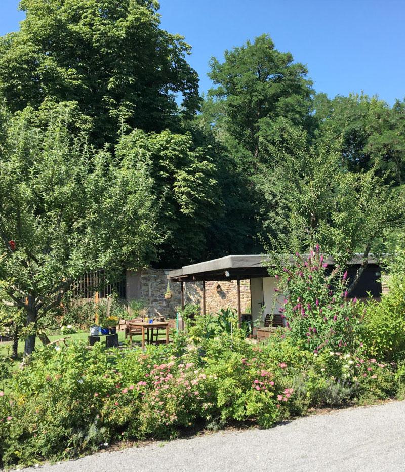 Kleingarten Mitte-Ost Gartenidylle